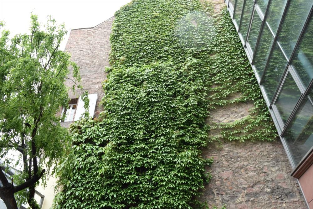 ゲーテハウス外壁